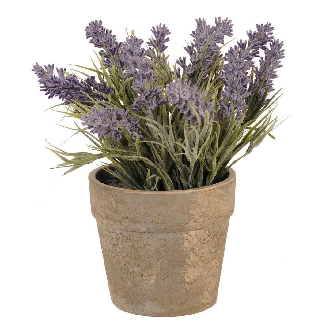 lavendel lavendeltopf 24cm clayre eef 6pl0055. Black Bedroom Furniture Sets. Home Design Ideas